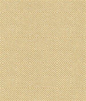 Kravet 32924.1116 Fabric