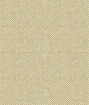 Kravet 32924.116 Fabric