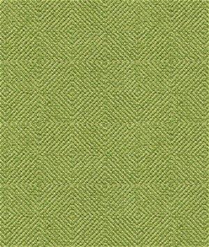 Kravet 32924.316 Fabric
