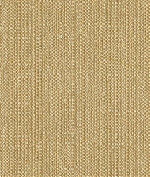 Kravet 33351.16 Fabric