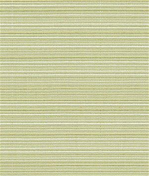 Kravet 33387.23 Tropicale Celery Fabric