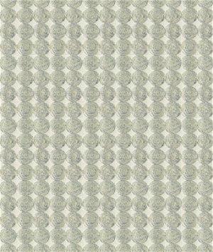 Kravet 33557.11 Rare Coin Sterling Fabric