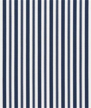 P/K Lifestyles Winston Indigo Fabric