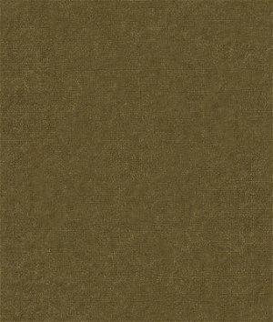 Kravet 9728.33 Forever Velvet Pear Fabric