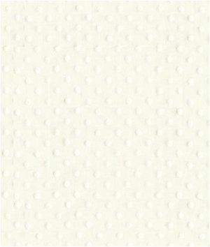 Kravet 9761.101 Fabric