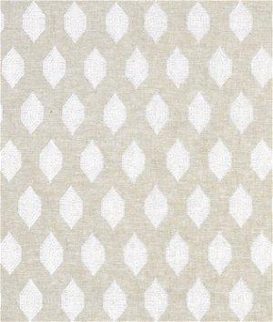 Portfolio Anisha Linen Fabric
