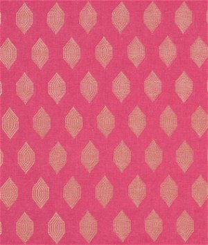 Portfolio Anisha Magenta Fabric
