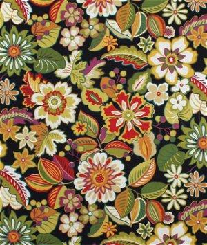 Swavelle / Mill Creek Outdoor Brummel Gala Fabric