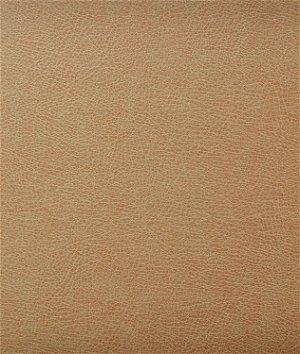 Kravet CASWELL.6 Fabric