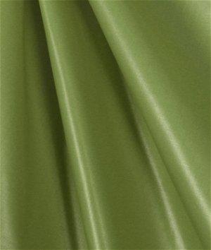 Apple Green Chintz Fabric