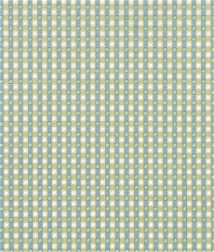 P. Kaufmann Colburn Azure Fabric