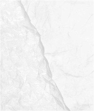 White Crushed Organza Fabric