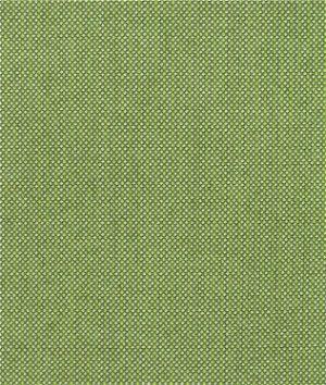 Sunbrella Spectrum Cilantro Fabric