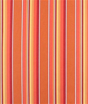 Sunbrella Dolce Mango Fabric