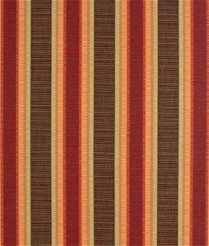 Sunbrella Dimone Sequoia Fabric