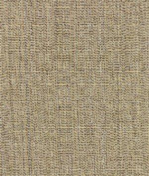 Sunbrella Linen Sesame Fabric