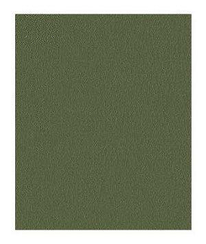 Kravet FORTUNE.30 Fabric