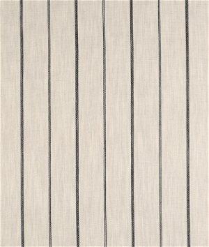 Richloom Fritz Glacier Fabric