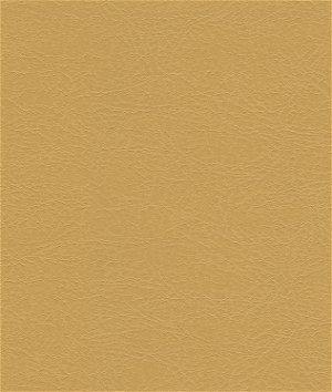 Kravet GAROUA.1616 Fabric