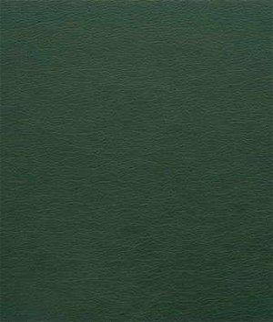 Kravet GATO.303 Fabric