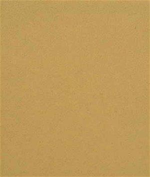 Kravet GENSLAR.124 Fabric
