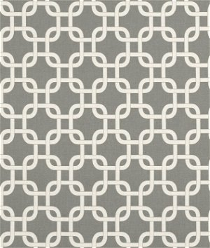 Premier Prints Gotcha Summerland Gray/Natural Fabric