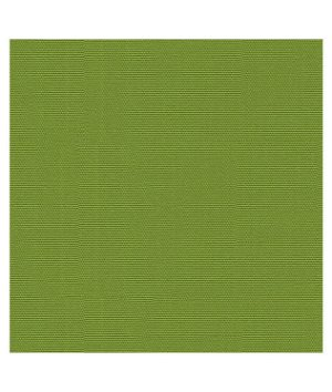 Kravet GR-54011-0000.0 Canvas Ginkgo Fabric