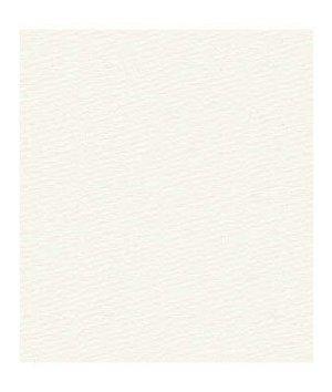 Kravet GR-5404-0000.0 Canvas Natural Fabric