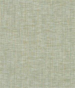 P. Kaufmann Groupie Dove Fabric