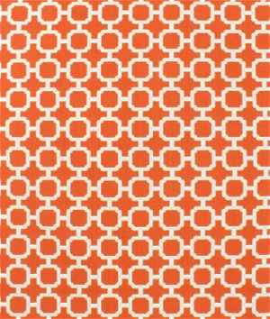 Swavelle / Mill Creek Outdoor Hockley Mandarin Fabric