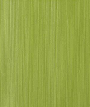 Kravet LIGHTSPEED.313 Lightspeed Apple Fabric