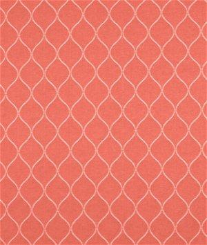 Covington Oh Gee Mandarin Fabric