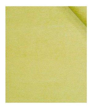 Robert Allen Fine Chenille Spring Grass Fabric
