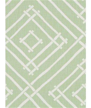 Robert Allen @ Home Chez Bamboo Cucumber Fabric