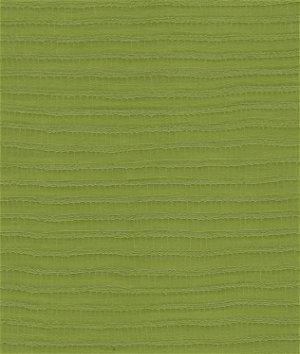 Kravet REVA.3 Reva Lime Fabric