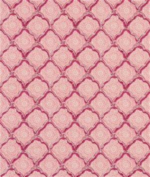 Portfolio Sanganer Raspberry Fabric