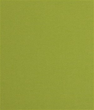 Richloom Outdoor Solar Kiwi Fabric