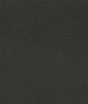 Ultrafabrics® Ultraleather™ Raven Wing Fabric