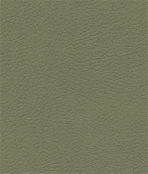 Ultrafabrics® Brisa® Sage Fabric