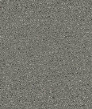 Ultrafabrics® Brisa® Ash Fabric