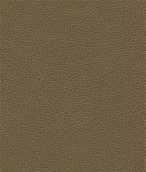Ultrafabrics® Promessa® Woodpecker Fabric