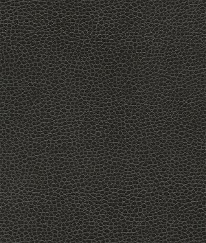 Ultrafabrics® Promessa® Ebony Fabric