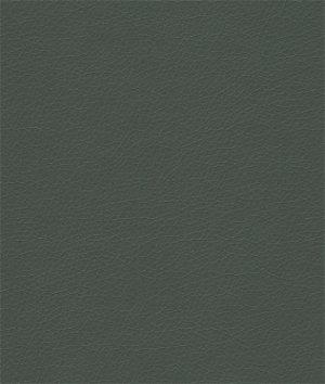 Kravet VALERA.303 Valera Forest Fabric