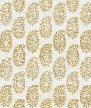 Kravet VASTU.4 Vastu Burnished Fabric
